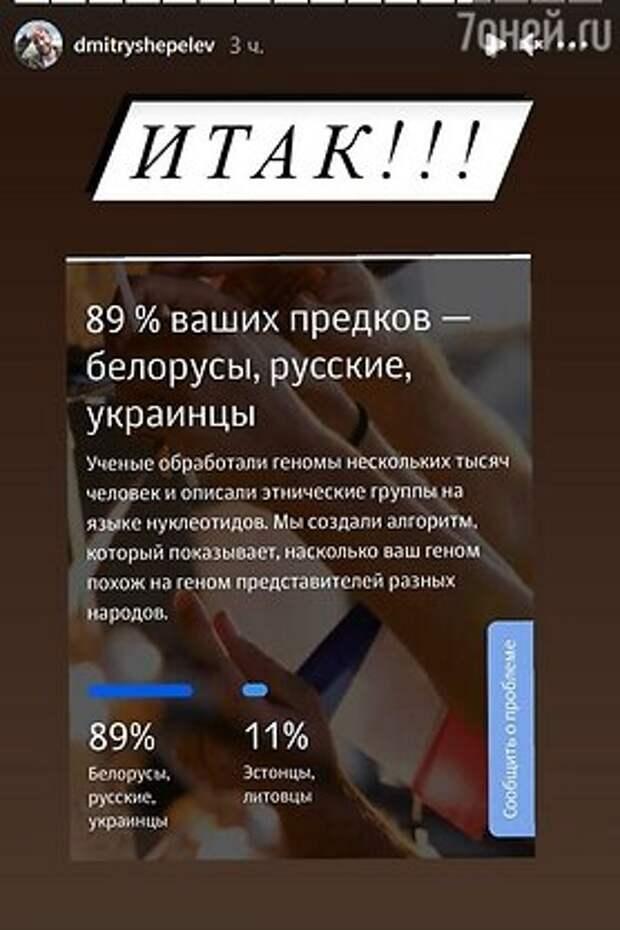 «Сделал ДНК-тест»: Дмитрий Шепелев обнаружил у себя 57 родственников