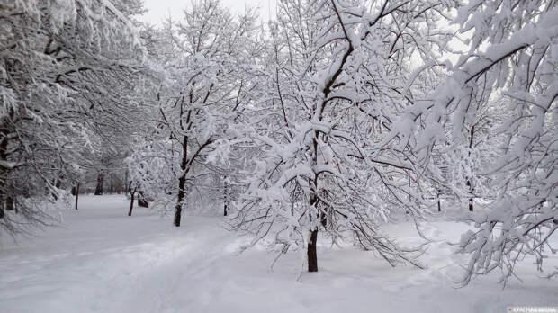 На Тибет надвигаются мощные снегопады