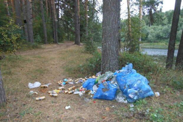 Все сложили в мусорные пакеты и прислонили к дереву, какая прелесть  будь Человеком, лес, природа