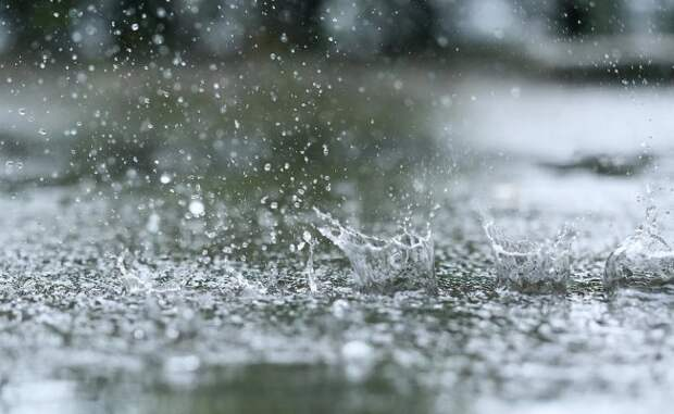 Синоптики прогнозируют на понедельник в Беларуси туман и дожди