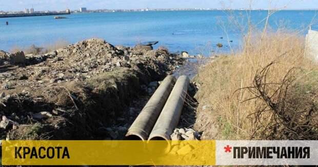 Купаться в море у берегов Крыма можно — если знаешь, где
