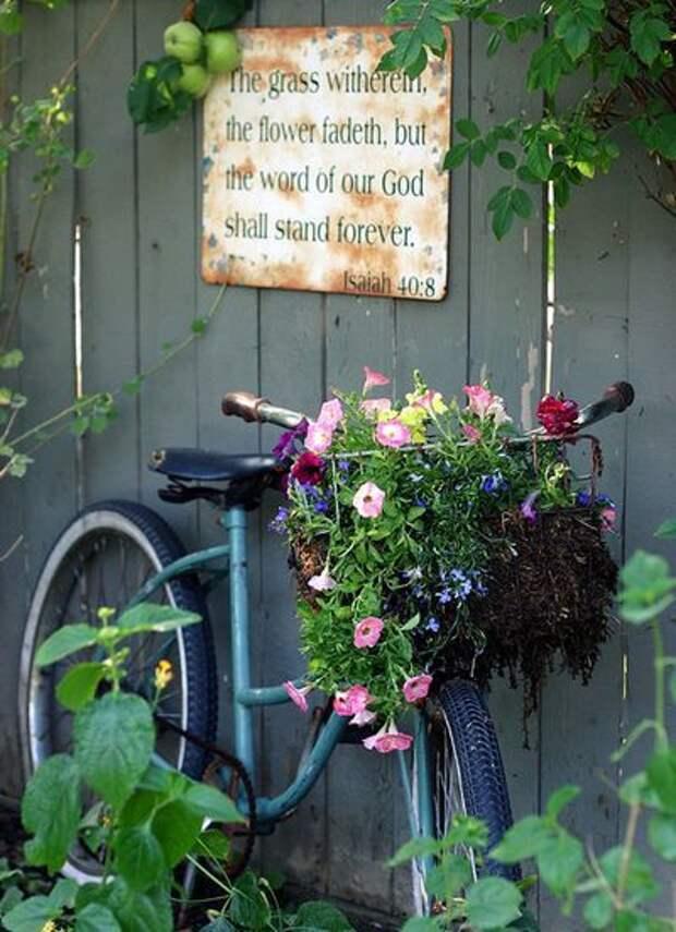 Старые велосипеды, превращенные в шикарные клумбы
