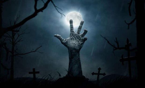 Сможем ли мы однажды вернуть мертвых к жизни?
