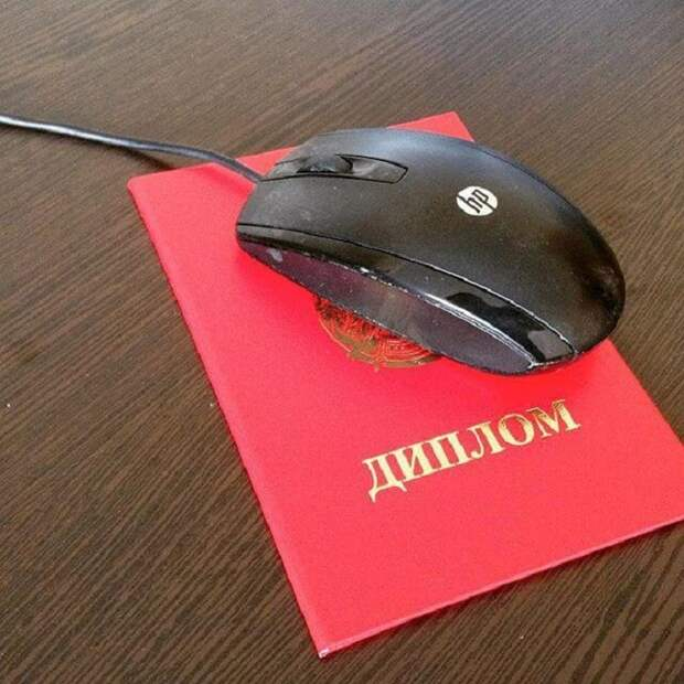 Диплом - это отличный коврик для мыши! вуз, диплом, полезное, фото