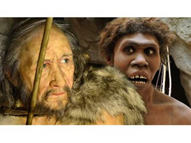 Генетики выяснили, зачем предки людей скрещивались с неандертальцами