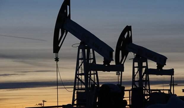 Падения добычи нефти игаза вРоссии ожидает Минэнерго РФ