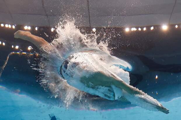 Летают, плавают, с ума сойти: топ-5 фотографий первого дня Олимпиады