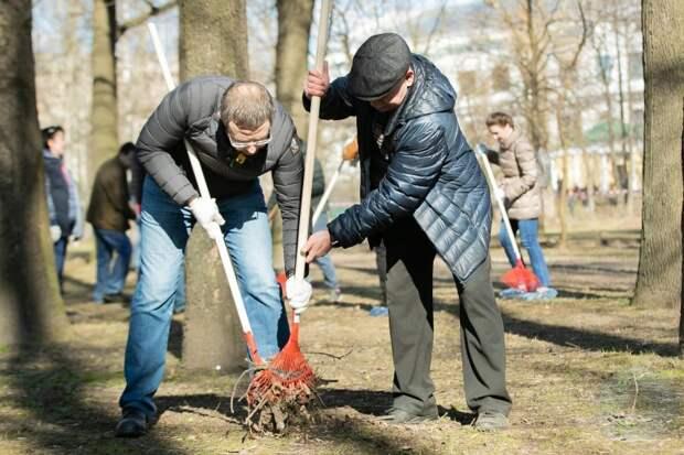 Резник и Вишневский носы воротят от субботников: Макаров не ходит, и мы не будем