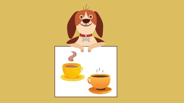Собака и напитки