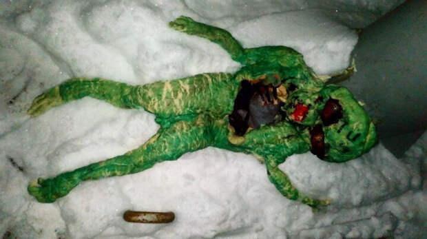 Жителей города Гусь Хрустальный напугали останки странного животного