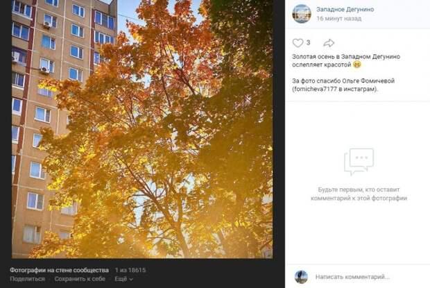 Фото: золотая осень пришла в Западное Дегунино