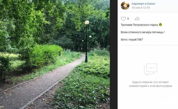 Фото дня: окрестности Петровского парка