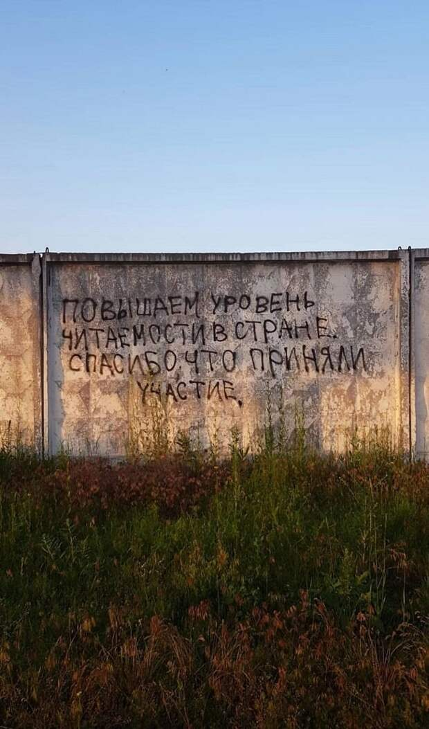 Загонные объявления и надписи (13 фото)