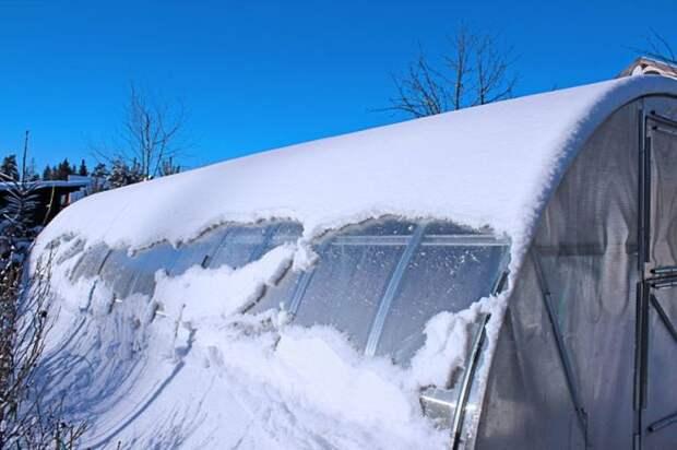 Близится зима. /Фото: prosad.ru.