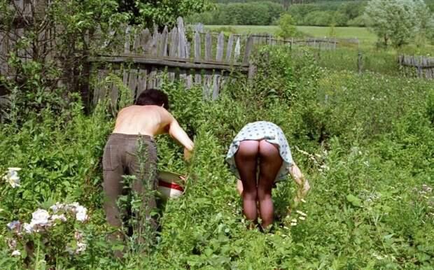 Чтобы потом принять привычную позу. И поехало... дача, дачница, девушки, деревня, колхозница, юмор