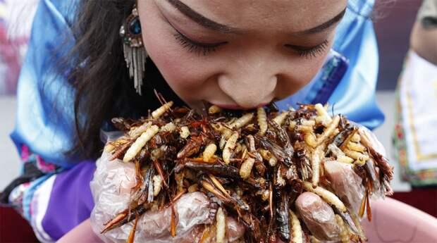 Съешь, если сможешь: конкурс по поеданию насекомых в Китае