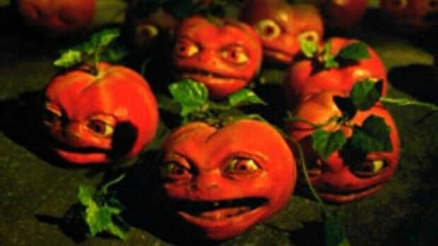 Российские магазины в спешке «открещиваются» от турецких помидоров