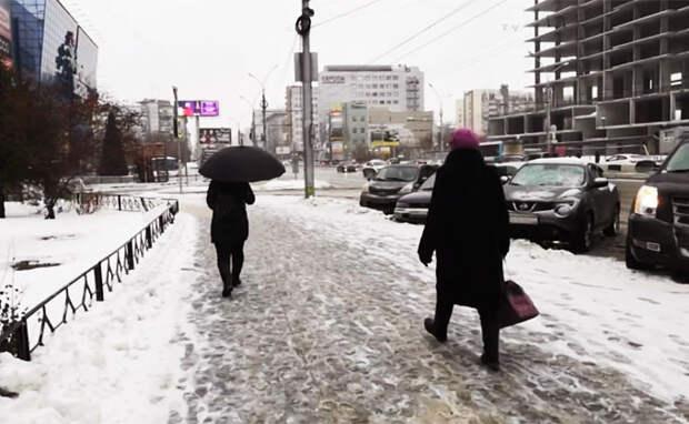 Аномальная оттепель – как выживают новосибирцы