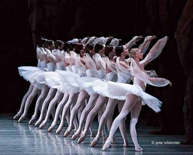 Image result for Как выглядит обычный рабочий день балерины?