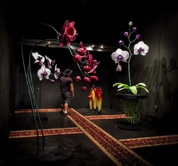 Цветы из стекла или удивительный мир Джейсона Гамрата