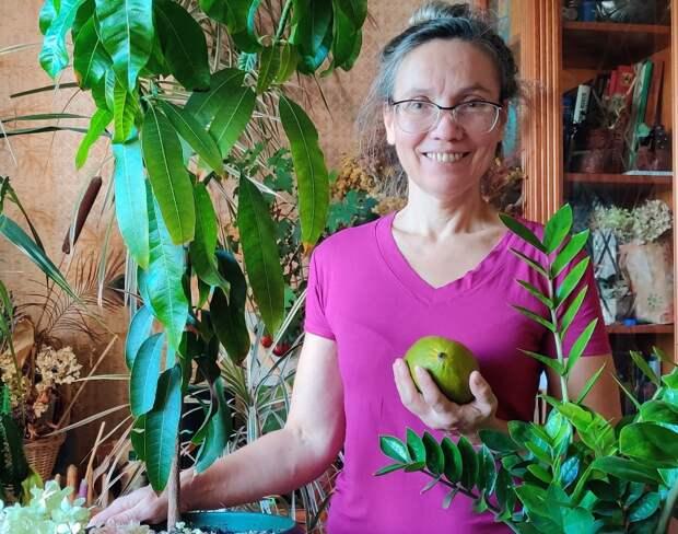 Корректор из Бибирева выращивает у себя дома «долларовое дерево»
