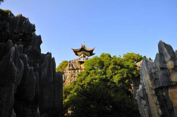 kamenniles 5 Чудеса света: каменный лес Шилинь в Китае