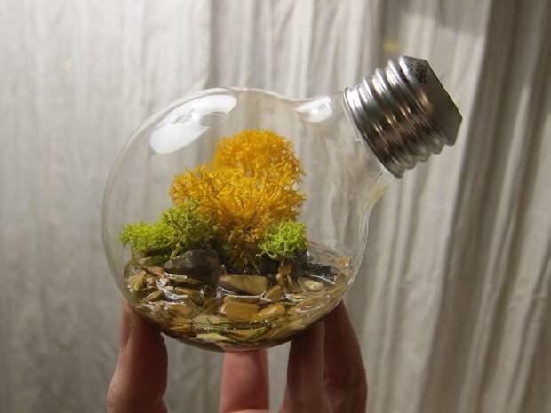 Вы и представить не могли, что такое можно сделать из перегоревшей лампочки. Гениально!