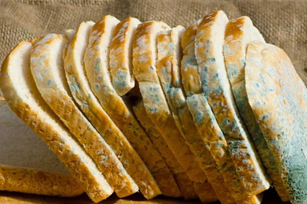 Хлеб с плесенью: что будет если его съесть