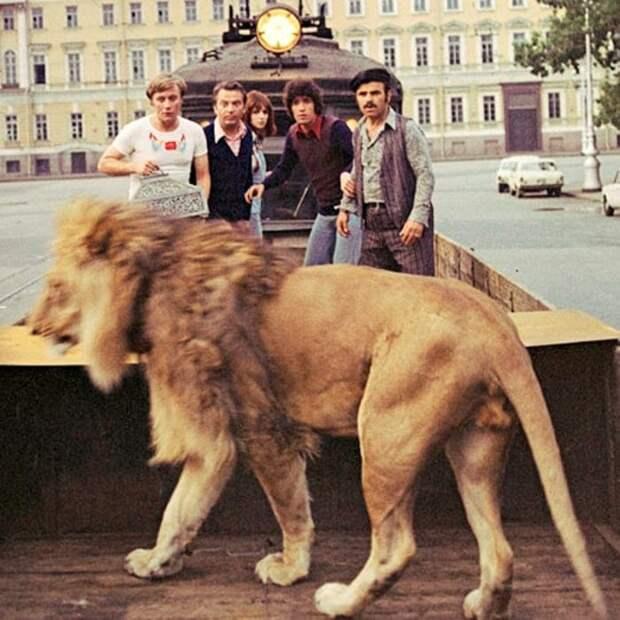 Кадр из фильма *Невероятные приключения итальянцев в России*, 1973 | Фото: trend.az