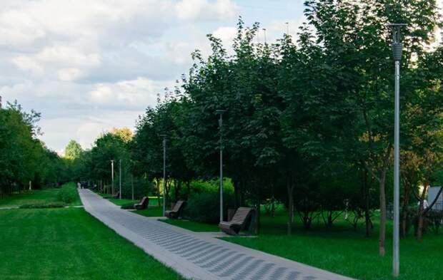 В Северном Тушине высадили более 800 деревьев
