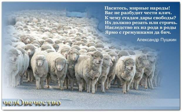 Паситесь, мирные народы!..