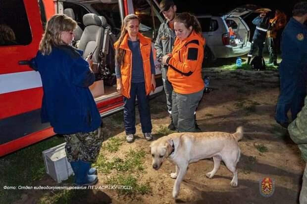За выходные московские спасатели оказали помощь восьми пострадавшим