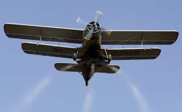 Первым после 2014 года новым военным самолетом Украины стал дряхлый «кукурузник»