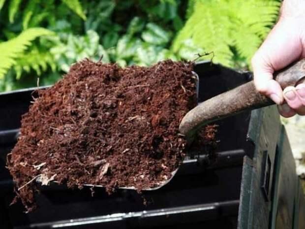 10 правил хорошего компоста