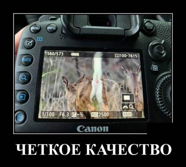 Демотиватор про качество фото