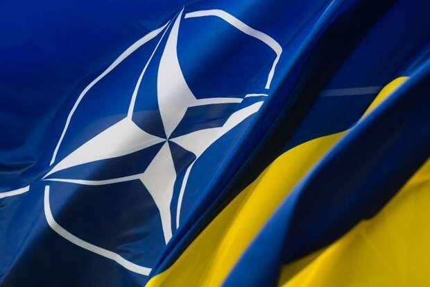 Спор с товарищем Дарвином о вступлении ВСУ в НАТО