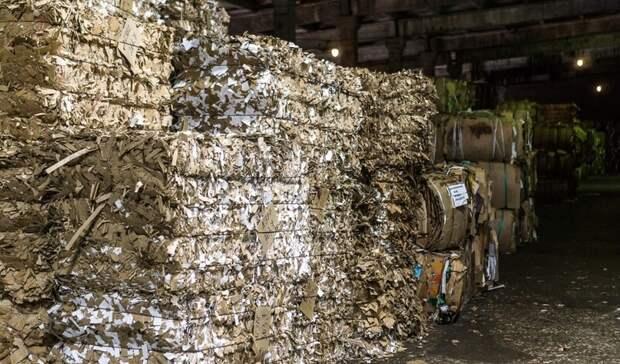 """Вторичное использование сырья позволяет """"ПЦБК"""" сохранять до 6 млн деревьев в год"""