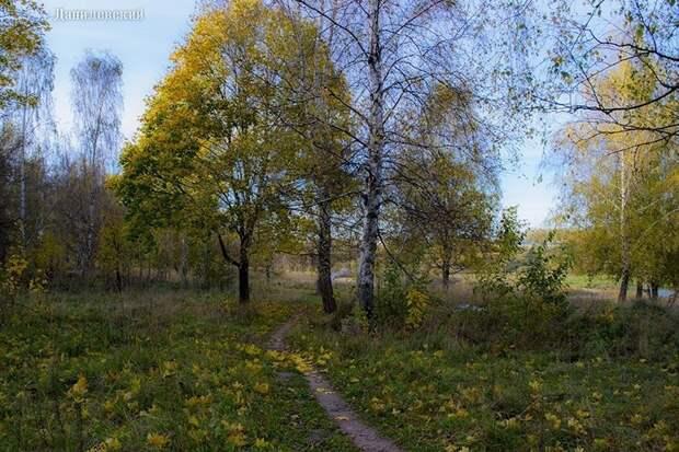 Красоты России (#435)
