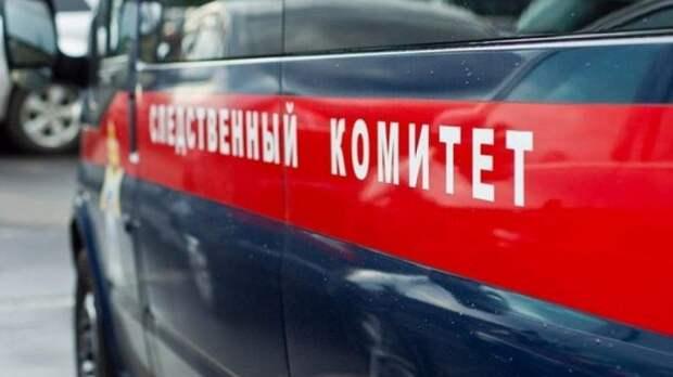 Дело о драке в Чемодановке Пензенской области переквалифицировано на статью об убийстве