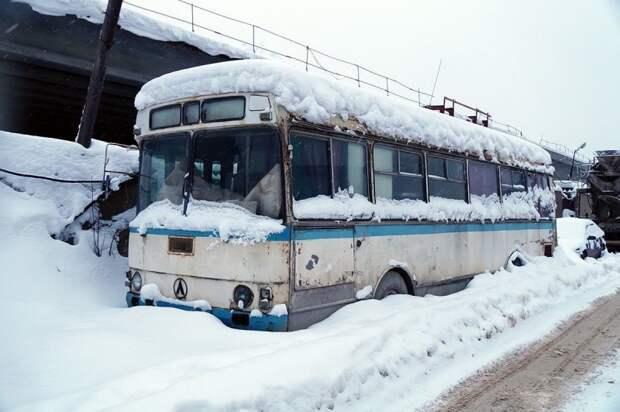Зимовка. ЛАЗ-4969 в декабре 2017 ЛАЗ, ЛАЗ-4969, авто, автобус, кухня, олдтаймер, ретро техника, фудтрак