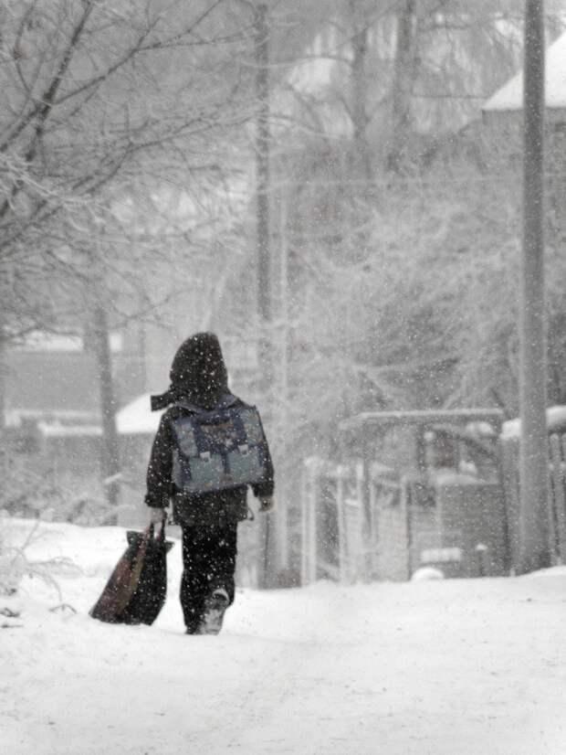 Школы Кубани перейдут на дистанционное обучение из-за непогоды