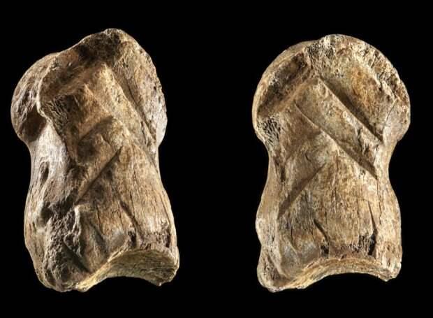Неандертальцы изготовили костяное украшение более 51000 лет назад