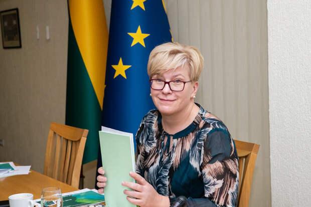Литва уличила Россию в превращении в «Советский Союз 2.0»