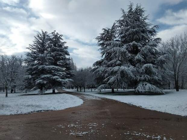 Снег в Крыму в этом году будет последним