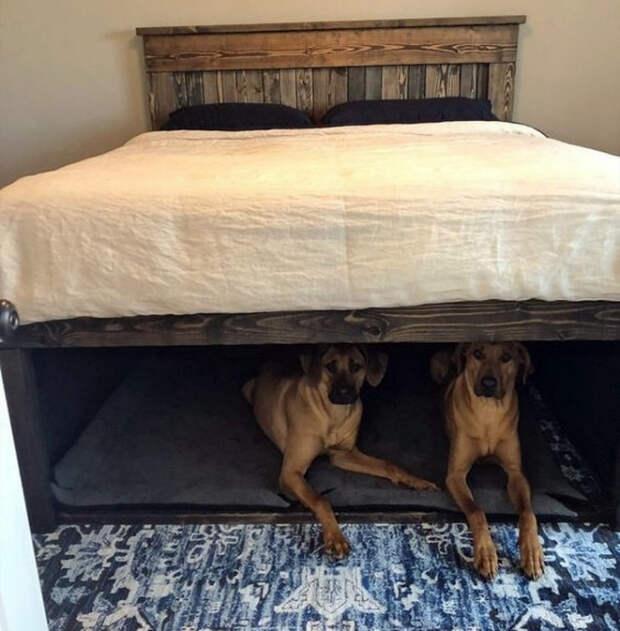 Короб под кроватью. | Фото: BLes.com.