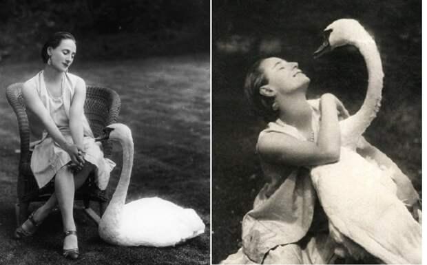 Любимые питомцы Анны Павловой