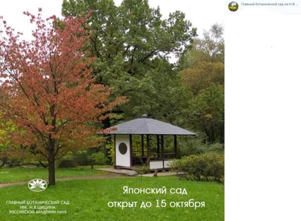 Японский сад на Ботанической 15 октября закроется на зиму