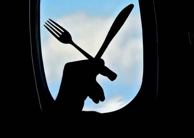 Топ-10 авиакомпаний, где, по мнению пассажиров, вкусно кормят