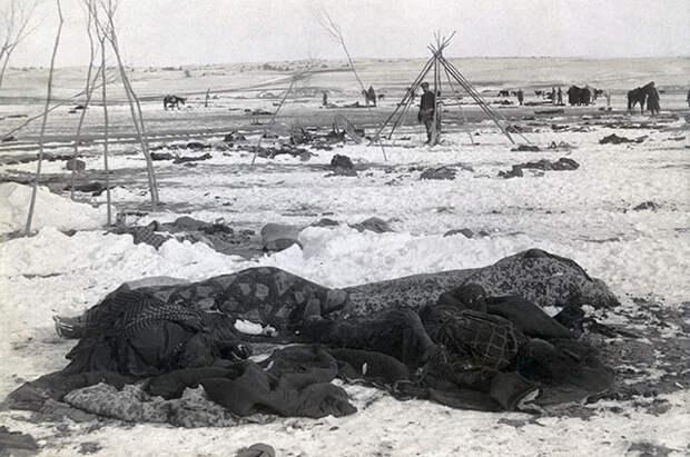 Остатки индейского лагеря у ручья Вундед-Ни.
