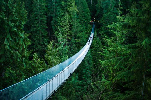 Канада. Подвесной мост Капилано. Сооружение расположено на высоте 70 метров над одноименной рекой. (Michelle Lee)